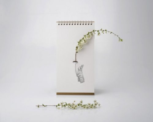 Flip Vase Companion *