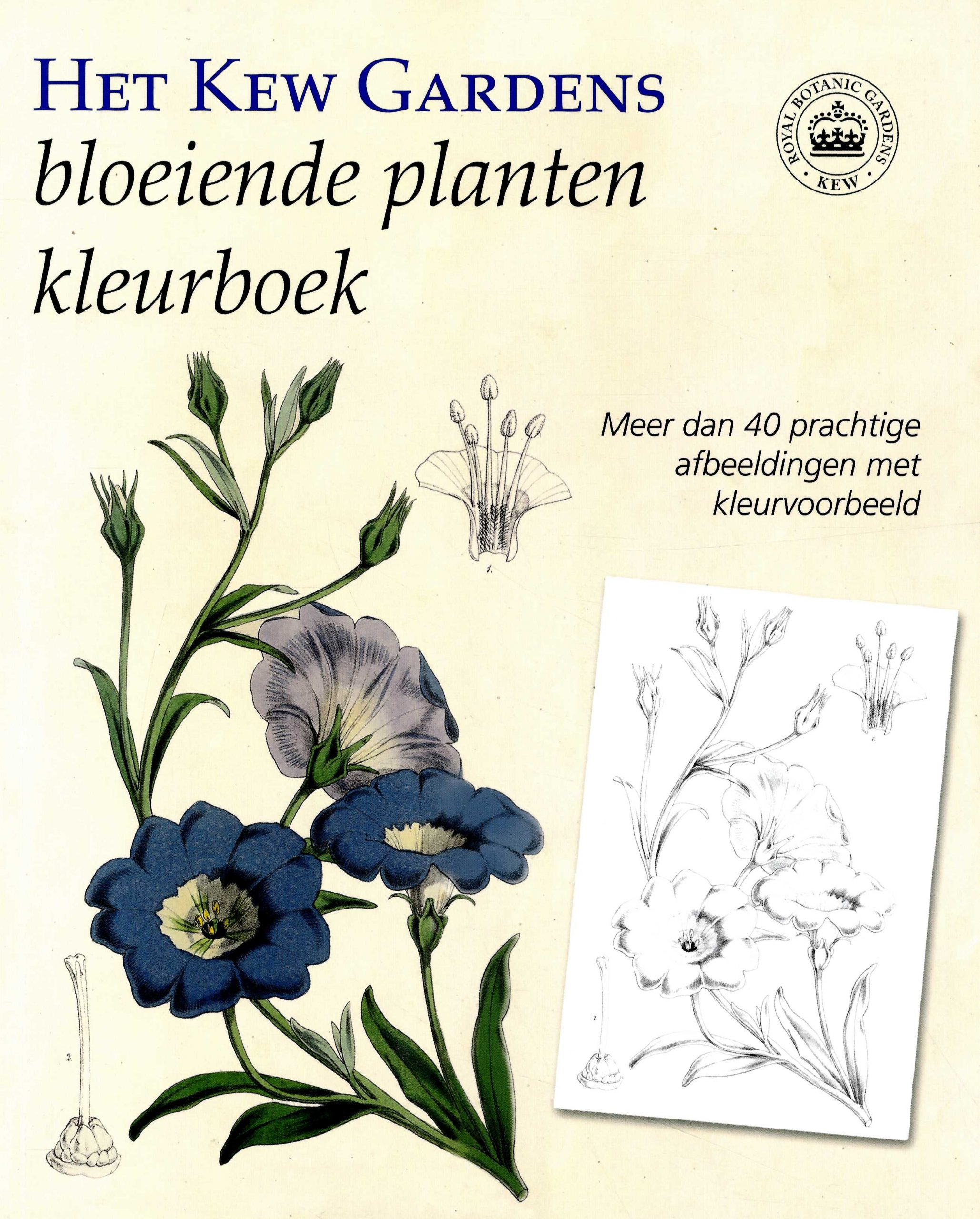 Kew Gardens Bloeiende Planten Kleurboek