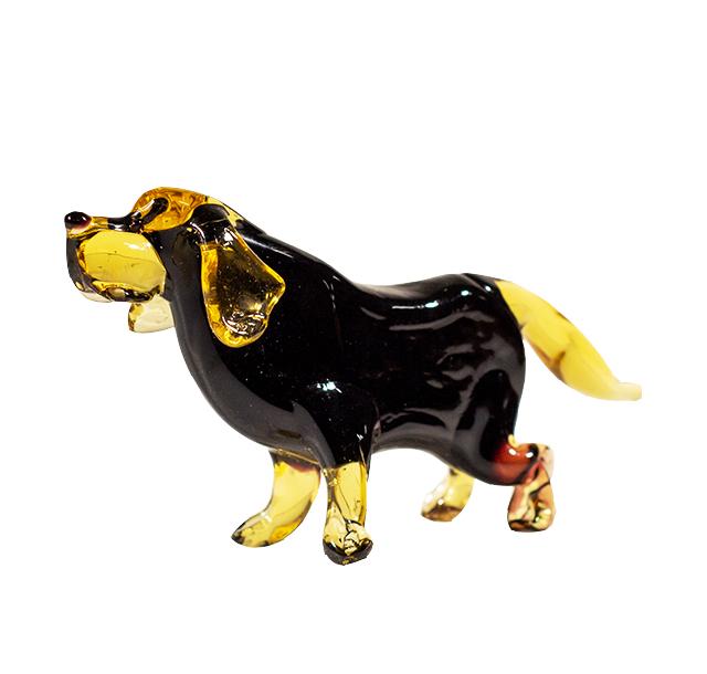 Labrador zwart *
