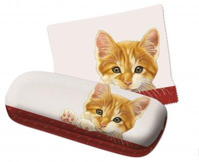 GB694 Brillenkoker + doekje Franciens Katten